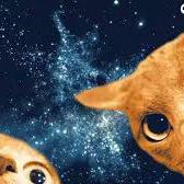 Astro_kitty